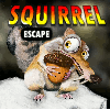 Ena Squirrel Escape