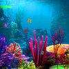Lost Fish Escape 2
