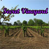 Secret Vineyard